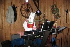 11.02.12_Bild3288_Das rote Pferd